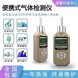 臭氧浓度检测仪便携泵吸式消毒残留探测器