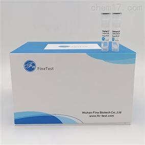 人白介素6elisa试剂盒