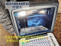 背膘眼肌面积测定仪操作使用方法教程
