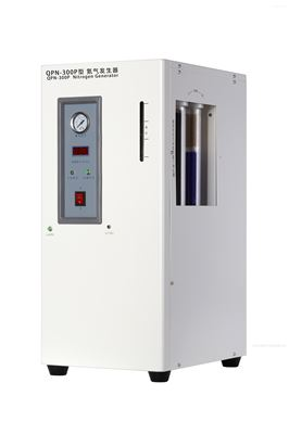 QPN-300P 型氮气发生器(内置空气源)