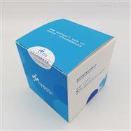 HEK-293A293A (人胚肾细胞)STR鉴定高活性好传代