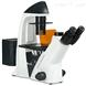 重庆奥特荧光显微镜