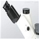 重庆奥特实验室倒置荧光显微镜