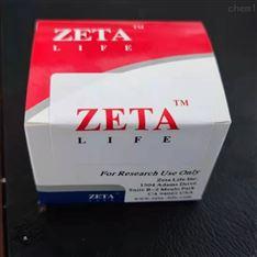 人淋巴悬浮细胞转染试剂(Zeta Life)