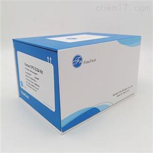 Human TERT ELISA试剂盒