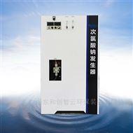 HCCL简易式次氯酸钠发生器/饮用水处理消毒设备