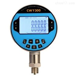 XJ11/CWY300数字高精度压力表 库号:M392123
