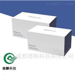 DL-X08环境拭子样本基因组DNA提取试剂盒