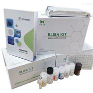 小鼠ELISA试剂盒