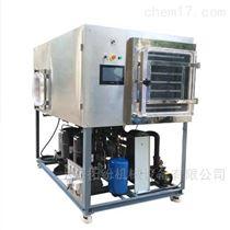 水果凍干機  智能冷凍干燥機
