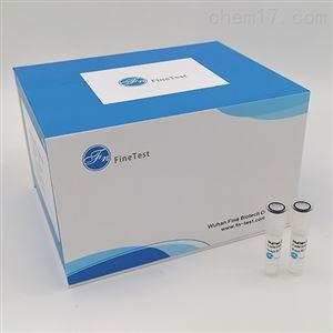 Human NAMPT ELISA试剂盒