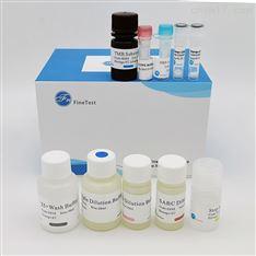 Human NFKB1 ELISA试剂盒