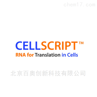 cellscript品牌代理