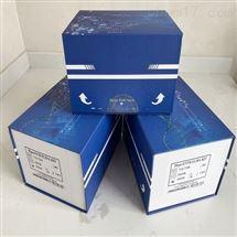 小鼠干扰素调节因子7(IRF7)ELISA试剂盒
