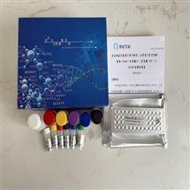 小鼠干扰素诱导蛋白(IP-10)ELISA试剂盒