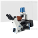 ICX41 倒置荧光显微镜