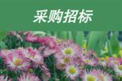 176涓� 楂���娑茬�歌�茶氨浠�绛���寮�����