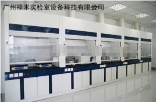 廣州全鋼聯體通風柜