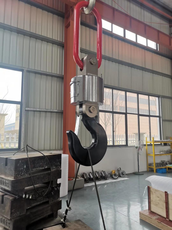 上海本熙电子吊秤
