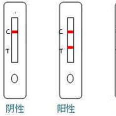 霍亂弧菌O1快速檢測試劑說明書