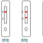 傷寒沙門氏菌檢測卡(膠體金法)