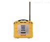 AreaRAE Plus远程通讯多气体检测仪
