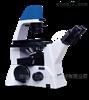 MF52-N荧光倒置显微镜