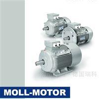 MOLL-MOTOR电机