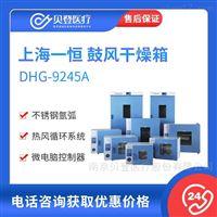 一恒 9000系列鼓風干燥箱(DHG-9245A)